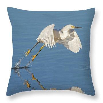 Lift Off- Snowy Egret Throw Pillow