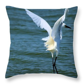 Throw Pillow featuring the photograph Liftoff by Bob Wall