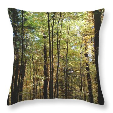 Light Among The Trees Vertical Throw Pillow by Felipe Adan Lerma