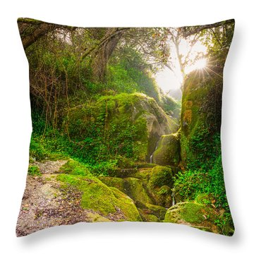 Light And Magic II Throw Pillow