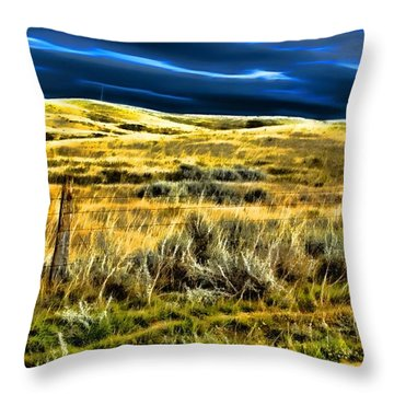 Light And Shadow Throw Pillow by Aliceann Carlton