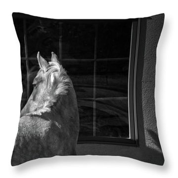 Throw Pillow featuring the photograph Light And Shadow by Catherine Sobredo