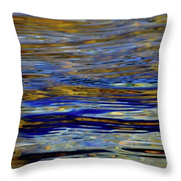 Light And Water  Throw Pillow by Lyle Crump