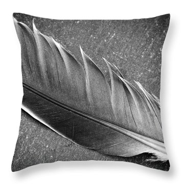 Throw Pillow featuring the photograph Light As A Feather by Karen Stahlros