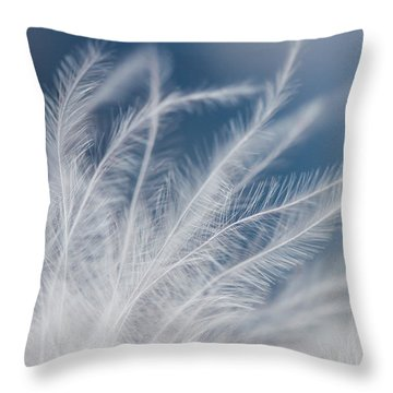Light As A Feather Throw Pillow by Yvette Van Teeffelen