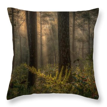 Light Bath Throw Pillow