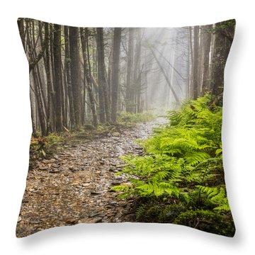 The Great Smoky Mountains Throw Pillows