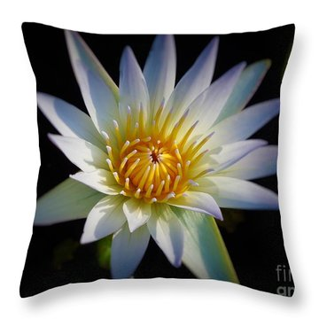 Throw Pillow featuring the photograph Light Blue Water Lily by Chad and Stacey Hall