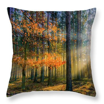 Light Catcher Throw Pillow