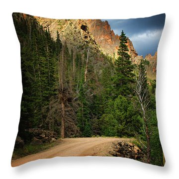 Throw Pillow featuring the photograph Light Dancing by John De Bord