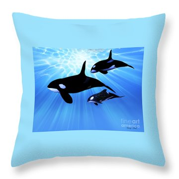 Light Echo Throw Pillow by Corey Ford