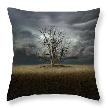 Light From The Heavens Throw Pillow
