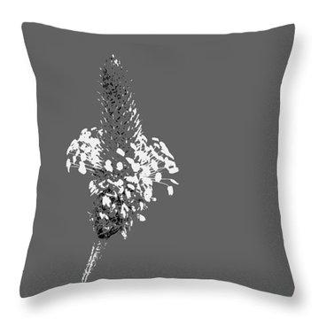 Light Grey Plantain Throw Pillow