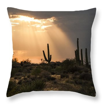 Light In The Desert Throw Pillow