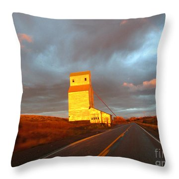 Light Just Right Throw Pillow