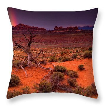 Light Of The Desert Throw Pillow