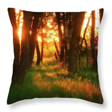 Throw Pillow featuring the photograph Light Of The Forest II by John De Bord