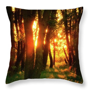 Throw Pillow featuring the photograph Light Of The Forest by John De Bord