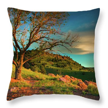 Throw Pillow featuring the photograph Light Of The Hillside by John De Bord