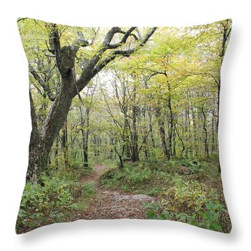 Light On Path Throw Pillow
