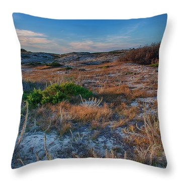 Light On The Dunes Throw Pillow by Bill Roberts