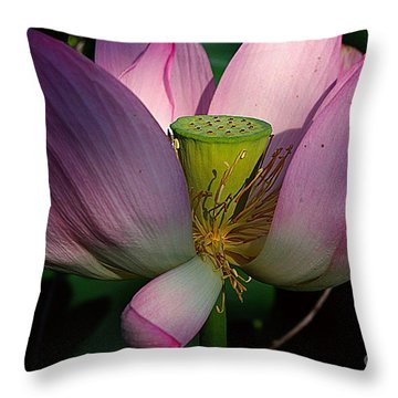 Light On The Lotus Throw Pillow by John S