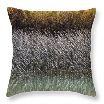 Light On The Pond Throw Pillow