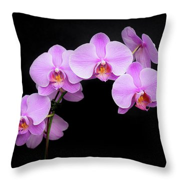 Light On The Purple Please Throw Pillow