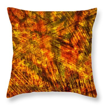 Throw Pillow featuring the mixed media Light Play by Sami Tiainen