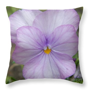Spurred Anoda - Light Purple Tones Throw Pillow