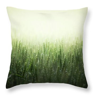 Light Storm Throw Pillow