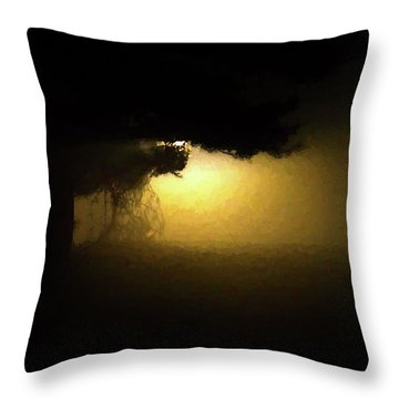 Light Through The Tree Throw Pillow