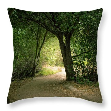 Light Through The Tree Tunnel Throw Pillow