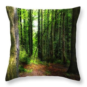 Light Through The Trees Throw Pillow by Meirion Matthias