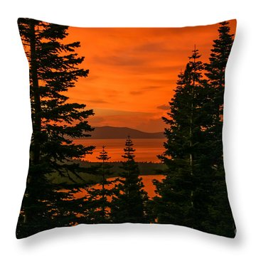 Light Through The Trees Throw Pillow by Mitch Shindelbower
