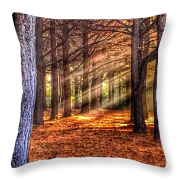 Light Thru The Trees Throw Pillow by Sumoflam Photography