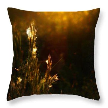 Light To My Path Throw Pillow by Roberto Aloi