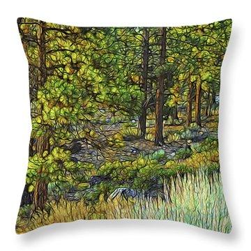Light Trail Throw Pillow