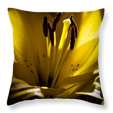 Lighted Lily Throw Pillow by David Patterson