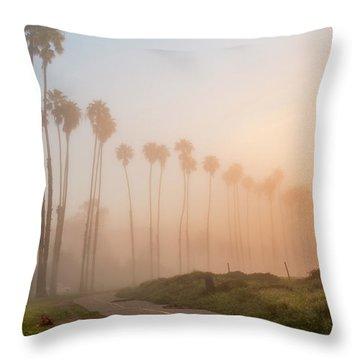 Lighter Longer Throw Pillow by Sean Foster