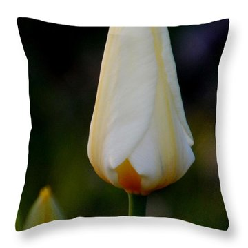 Lighter Shade Of Pale Throw Pillow