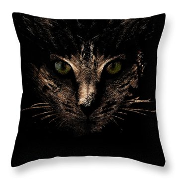 Lighting Throw Pillow