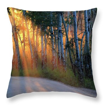 Throw Pillow featuring the photograph Lighting The Way by Shane Bechler