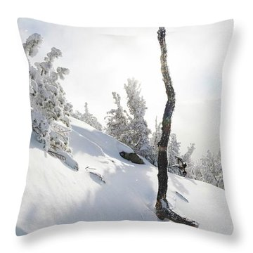 Lightning Tree By Brad Scott Throw Pillow