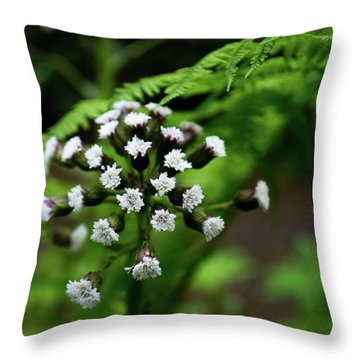 Throw Pillow featuring the photograph Lights Amid The Green by Erin Kohlenberg