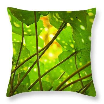 Ligularia Tussilaginea Throw Pillow by Carlos Caetano