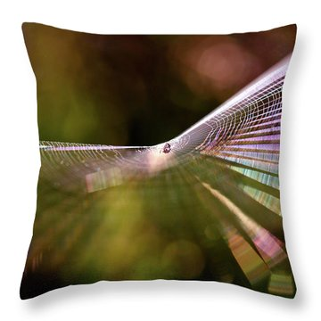 Maze Art Throw Pillows