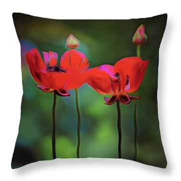 Like Anything Else, This Too Shall Pass.... Throw Pillow