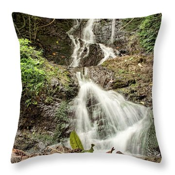 Likeke Throw Pillow by Heather Applegate