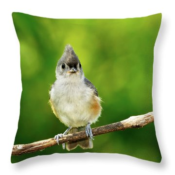 Liking My Style Throw Pillow by Betty LaRue